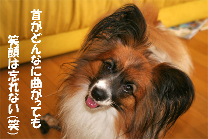 yuzu080623-6.jpg