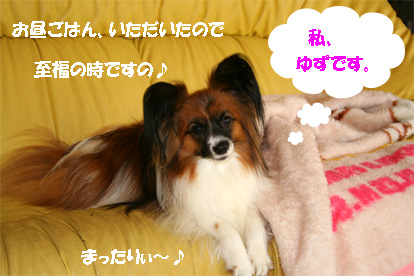 yuzu080624-1.jpg