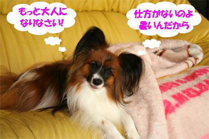 yuzu080624-2.jpg