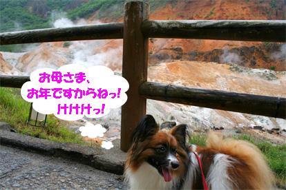 yuzu080818-1.jpg
