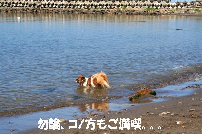 yuzu080819-1.jpg