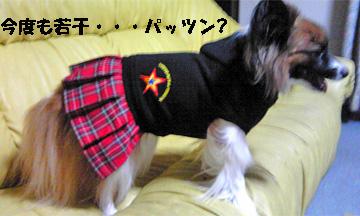 yuzu080926-3.jpg