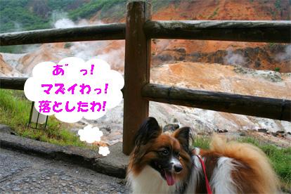 yuzu080927-1.jpg