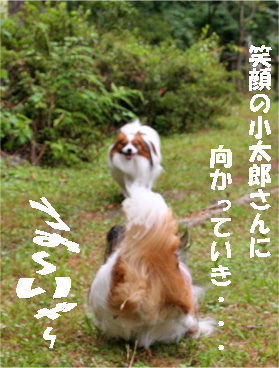 yuzu080928-4.jpg