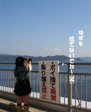 yuzu081101-2.jpg