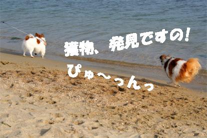 yuzu081102-4.jpg