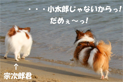 yuzu081102-6.jpg
