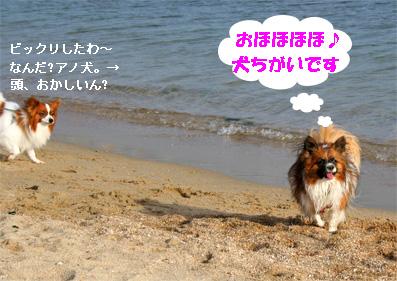 yuzu081102-8.jpg