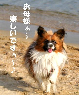 yuzu081102-9.jpg
