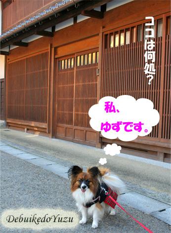 yuzu090313-1.jpg