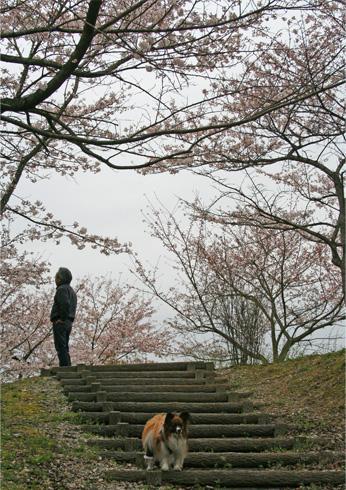 yuzu090407-2.jpg