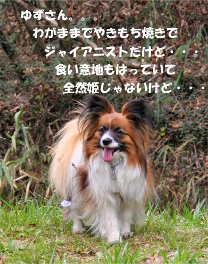 yuzu090407-4.jpg