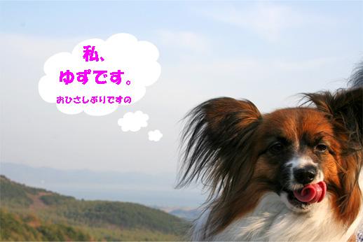 yuzu090502-1.jpg