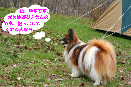 yuzu090504-1.jpg