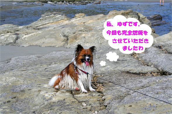 yuzu090529-6.jpg
