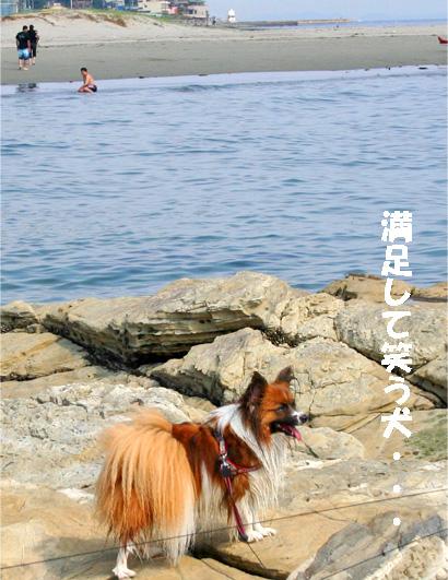 yuzu090529-7.jpg