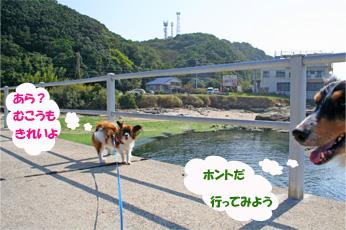 yuzubura061022-1.jpg