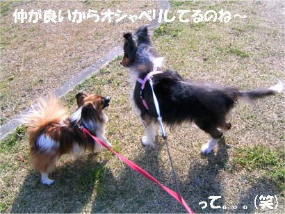 yuzubura070414-1.jpg
