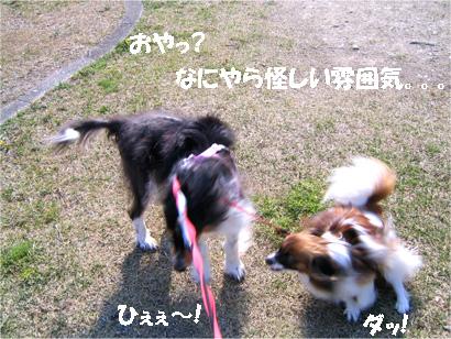 yuzubura070414-2.jpg