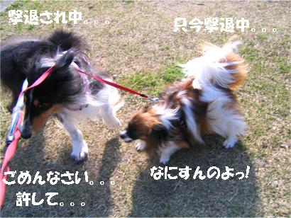 yuzubura070414-3.jpg