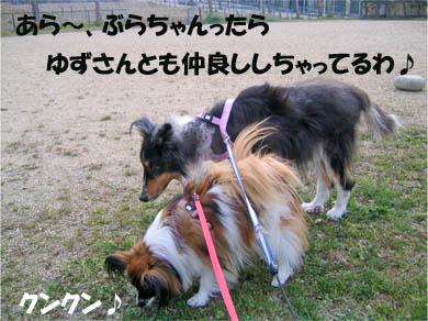 yuzubura070424-1.jpg