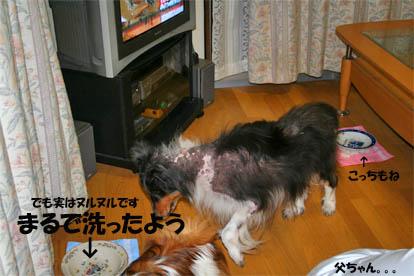 yuzubura070429-2.jpg