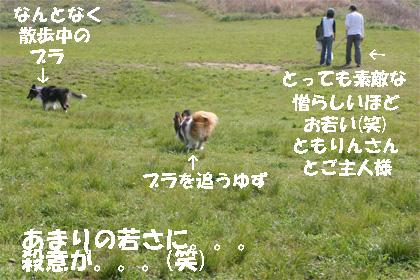 yuzubura070507-1.jpg