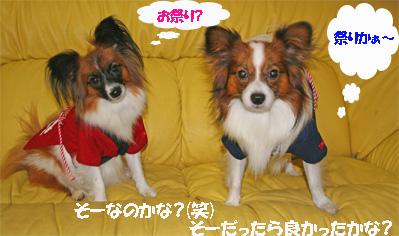 yuzukota061025-1.jpg