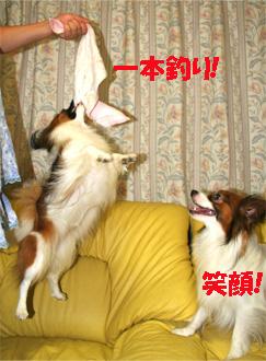 yuzukota061108-2.jpg
