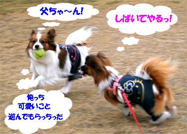 yuzukota061120-2.jpg