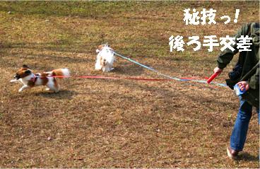 yuzukota061218-3.jpg