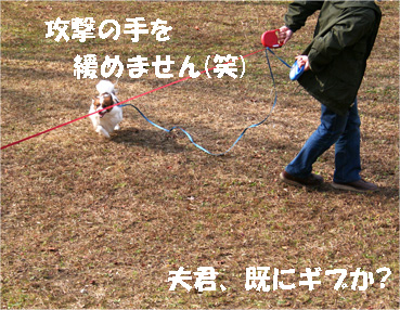 yuzukota061218-5.jpg
