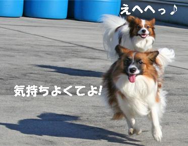 yuzukota061224-2.jpg