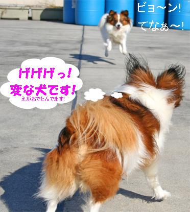 yuzukota061224-4.jpg