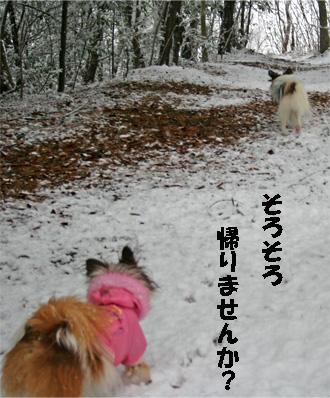 yuzukota070108-6.jpg