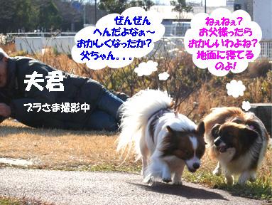 yuzukota070118-1.jpg