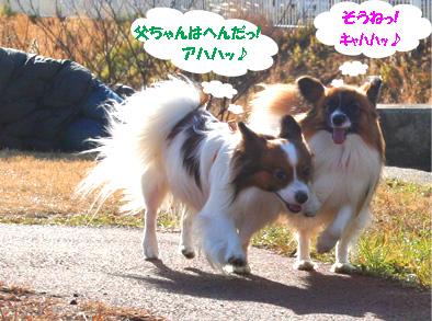 yuzukota070118-2.jpg