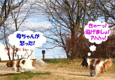 yuzukota070118-3.jpg
