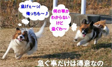 yuzukota070119-1.jpg