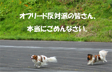 yuzukota0701725-2.jpg