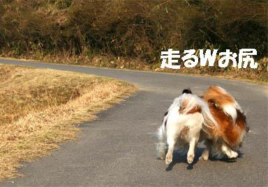 yuzukota070307-2.jpg