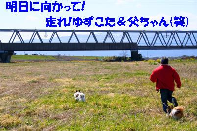 yuzukota070327-2.jpg