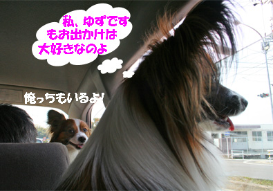 yuzukota070409-1.jpg
