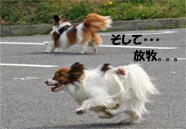 yuzukota070410-4.jpg