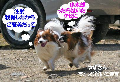 yuzukota070416-2.jpg