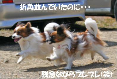 yuzukota070416-3.jpg