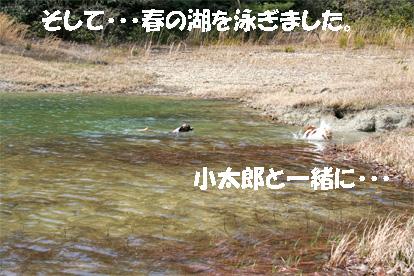 yuzukota070417-1.jpg