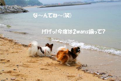 yuzukota070511-3.jpg