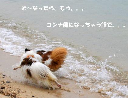 yuzukota070512-2.jpg