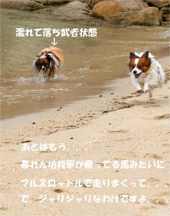 yuzukota070512-3.jpg